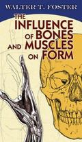 The Influence of Bones and Muscles on Form