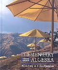 Elementary Algebra W/PAC-Now