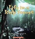 Life in a Kelp Forest