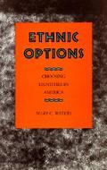 Ethnic Options Choosing Ethnic Identities in America