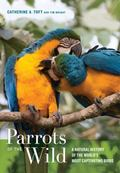 Parrots of the Wild : A Natural History of the World's Most Threatened Birds