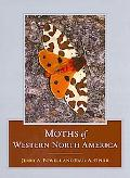 Moths of Western North America
