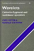Wavelets Calderon-Zygmund and Multilinear Operators