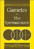 Gametes The Spermatozoon