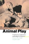 Animal Play Evolutionary, Comparative, and Ecological Perspectives