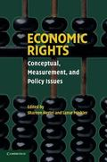 Economic Rights Conceptual, Measurement, and Policy Issues