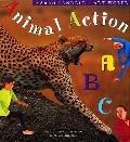 Animal Action ABC - Karen Pandell - Hardcover