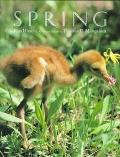 Spring - Ron Hirschi - Hardcover - 1st ed
