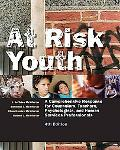 At Risk Youth A Comprehensive Response