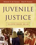 Juvenile Justice The System, Process, And Law