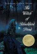 Witch of Blackbird Pond