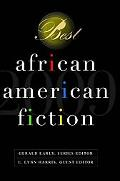 Best African-American Fiction Volume 1