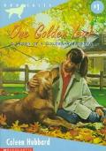 One Golden Year - Coleen Hubbard - Paperback