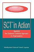 Sct in Action Applying the Systems-centered Approach in Organizations
