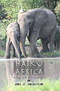 Haiku Africa Haikus and Photographs