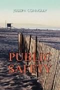 Public Safety: A Novel of 1941
