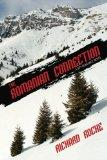 The Romanian Connection: A Spy Romance Novel