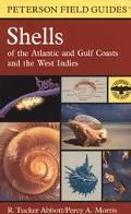 Field Guide to Shells Atlantic and Gulf Coasts and the West Indies