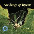 Songs of Insects