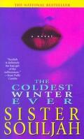 Coldest Winter Ever A Novel