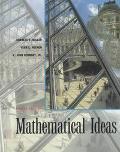 Mathematical Ideas (cloth)