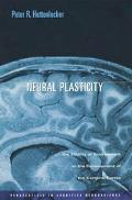 Neural Plasticity The Effects of Environment on the Development of the Cerebral Cortex