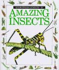Amazing Insects, Vol. 26