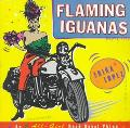 Flaming Iguanas An Illustrated All-Girl Road Novel Thing