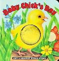 Baby Chick's Day