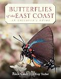 Butterflies of the East Coast An Observer's Guide