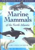 Marine Mammals of the North Atlantic