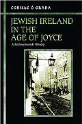 Jewish Ireland in the Age of Joyce A Socioeconomic History