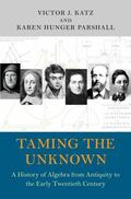 Taming the Unknown - a History of Algebra from Antiquity to the Early Twentieth Century