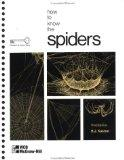 How to Know the Spiders (Pictured Key Nature)