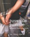 Juvenile Justice A Guide to Theory and Practice