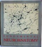 Fundamental Neuroanatomy
