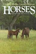 Horses:gde.to Selection,care,+enjoyment