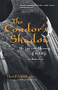 Condor's Shadow