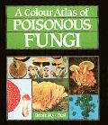 Colour Atlas of Poisonous Fungi A Handbook for Pharmacists, Doctors and Biologists