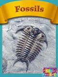 Fossils (Phonics Readers)
