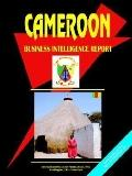 Cameroon Business Intelligence Report