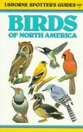 Birds of North America - Philip John Kennedy Burton - Paperback