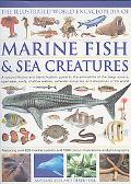 Illustrated World Encyclopedia Marine Fishes & Sea Creatures A Natural History and Identific...