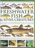 The Illustrated World Encyclopedia of Freshwater Fish and River Creatures