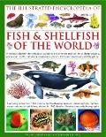 Illustrated Encyclopedia of Fish and Shellfish of the World : A Natural History Identificati...