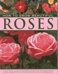 How To Grow Beautiful Roses : A Practical Guide To Growing, Caring for and Maintaining Roses...