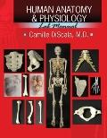 HUMAN ANATOMY AND PHYSIOLOGY LAB MANUAL