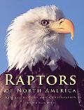 Raptors of North America Natural History and Conservation