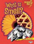 What Is Smell? (Lightning Bolt Books  - Your Amazing Senses)