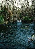 Lost in the River of Grass (Carolrhoda Ya)